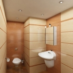 digest73-spice-tone-in-bathroom6.jpg