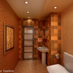 digest73-spice-tone-in-bathroom12-2.jpg