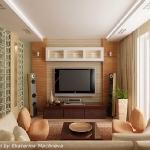 digest74-tv-in-contemporary-livingroom17.jpg