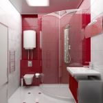 digest98-combo-red-and-white-in-bathroom15-1.jpg