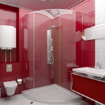 digest98-combo-red-and-white-in-bathroom15-2.jpg
