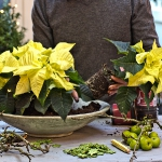diy-christmas-poinsettia-centerpiece2-1.jpg