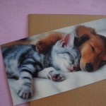 diy-photo-frame-of-carton2-1.jpg