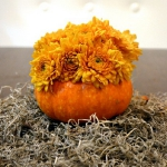 diy-pumpkins-vase-by-kristi1.jpg