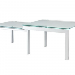 double-coffee-tables22.jpg
