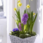 easy-creative-diy-floral-arrangement3-3.jpg