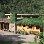 eco-etno-in-brazilian-homes1-2.jpg