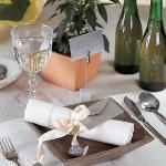 eco-summery-napkins-and-plates1-11.jpg