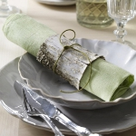 eco-summery-napkins-and-plates1-3.jpg