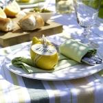 eco-summery-napkins-and-plates2-4.jpg
