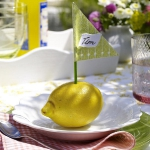 eco-summery-napkins-and-plates2-6.jpg