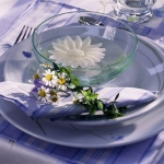 eco-summery-napkins-and-plates3-10.jpg