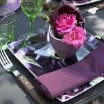 eco-summery-napkins-and-plates3-17.jpg