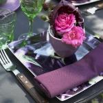 eco-summery-napkins-and-plates3-17.jpg