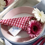 eco-summery-napkins-and-plates3-4.jpg