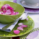 eco-summery-napkins-and-plates3-5.jpg