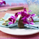 eco-summery-napkins-and-plates3-7.jpg