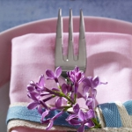 eco-summery-napkins-and-plates3-8.jpg