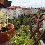 eco-vintage-berlin-apartment-balcony4.jpg