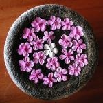 exotic-flowers-arrangement23.jpg