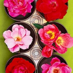 exotic-flowers-arrangement27.jpg