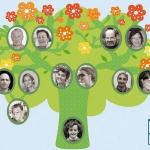 family-tree-wall-stickers1-3.jpg