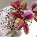 floral-arrangement-of-burgeons-and-petals4-3.jpg