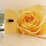 floral-realistic-photo-murals1-4.jpg