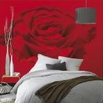 floral-realistic-photo-murals1-9.jpg