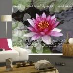 floral-realistic-photo-murals2-5.jpg