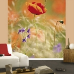 floral-realistic-photo-murals3-2.jpg
