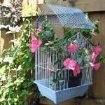 flowers-in-bird-cages-ideas1-2-3.jpg