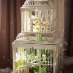 flowers-in-bird-cages-ideas2-2-6.jpg