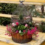 flowers-in-bird-cages-ideas2-3-2.jpg