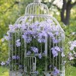 flowers-in-bird-cages-ideas2-4-1.jpg