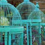flowers-in-bird-cages-ideas3-4-5.jpg