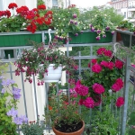 flowers-on-balcony-details1.jpg