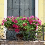 flowers-on-balcony-railing3-3.jpg