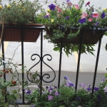flowers-on-balcony-railing3-5.jpg