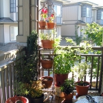 flowers-on-balcony2-1.jpg