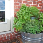 garden-flowers-mix-in-container1-3.jpg