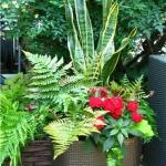garden-flowers-mix-in-container2-3.jpg