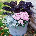 garden-flowers-mix-in-container5-3.jpg