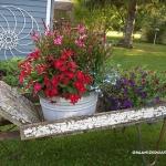 garden-flowers-mix-in-container9-3.jpg
