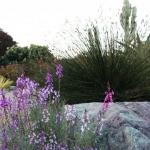 garden-inspiration-by-gabriel-mediterranean12.jpg