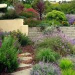 garden-inspiration-by-gabriel-mediterranean16.jpg