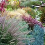garden-inspiration-by-gabriel-mediterranean17.jpg