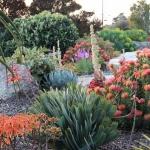 garden-inspiration-by-gabriel-mediterranean6.jpg
