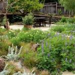 garden-inspiration-by-gabriel-mediterranean7.jpg
