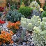 garden-inspiration-by-gabriel-succulent2.jpg